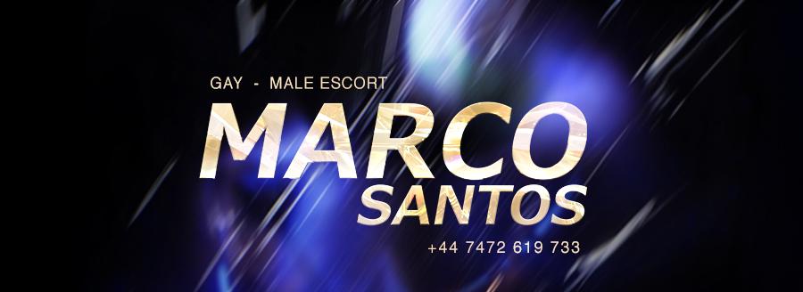 MARCO SANTOS – Official website logo